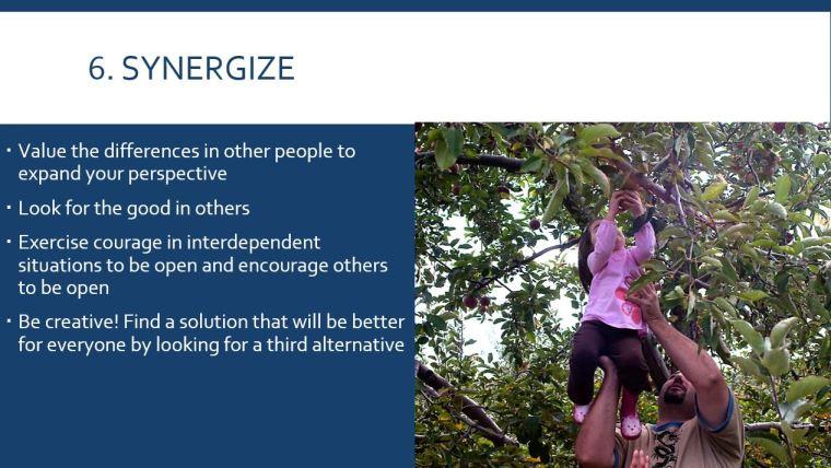 6. Synergize